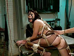 Coral aorta is a breasty brunette hair milf who enjoys being aroused while she is bound up in bondage devices. She likes having her mouth gagged with a ball as her beautiful domina takes advantage of her position. The hot blonde milf Lorelei Lee likes satisfying her sex slave with a transparent booty plug.