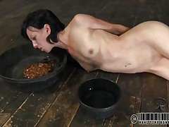 That babe has a bowl with water and one with food. Elise was a total doxy and now she's treated like one. Look at her how this babe struggles to eat and mostly of that food is on her face. What a obscene whore, this babe deserves greater quantity punishment for her manners. But first this babe needs some greater quantity humiliation, let's see her play.