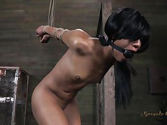 Isn't Nikki a ravishing beauty and hawt too? She's tied, blindfolded and face hole gagged with a ball. A big black male pumps her from behind and rips Nikki's twat before taking care of her mouth. His white buddy comes to aid him chastise this doxy and fucks her ass from behind also whilst the black one unfathomable mouths her