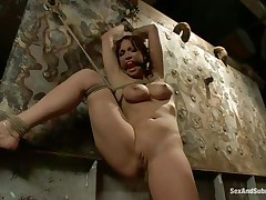Nicki Hunter is a red haired milf who enjoys having fellows around her whilst she is tied up with ropes. The hot honey can't live without having her throat gagged, coz she knows she will screech if it wouldn't be for that cute ball gag. Dude comes and removes her ballgag, and begins to fuck her pussy, slamming her on the wall.