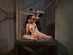 That guy tied her in a very uncomfortable position and used clamps on her nipples. She is ball gagged so that the screaming and moaning won't disturb the executor as this chab roughly rubs her cunt with a vibrator. The bitch stays there and has nothing to do then accept her situation. Curios what else awaits this bitch?