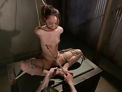 Kristina can't live without to sit comfortable and this babe was a fucking whore with no respect until this fellow putted his paws on her. Now she's all fastened up has clamps on her nipps that are pulling those small tits and a ball is used to gag her pretty mouth. Kristina sits there and gets whipped and punished, this babe deserves it.