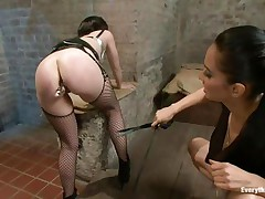 Do u have a fun seeing such a charming butt filled with an anal plug and spanked by some other hot brunette? Those whores are giving us quite a show and the punished one, with stockings seems to have a fun it a lot. They know that we are watching every and every move so these brunettes are giving their best in what they do.