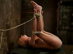 She's Kaylee and her pink wet snatch says it all as the executor applies a vibrator on it and then the brunette lesbo with sexy ass copulates that bald muff with a strap on dildo. Kaylee is tied up real good and her sexy legs are widen wide so we can perfectly see what is happening with her love tunnel and how the lesbo enjoys inserting her sex toy in it. Her blonde hair, pretty face and wet muff can make any chap horny and ready to cum on them, but what will the lesbo chick do, will she receive more help from that guy?